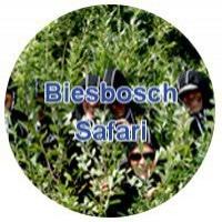 Biesboschsafari